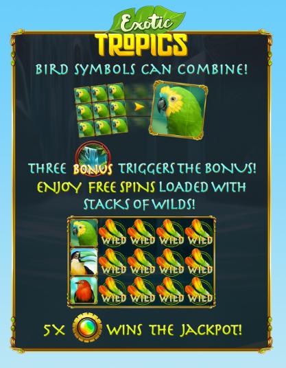 Exotic Tropics Slot Machine at Big Fish Casino - How to Play