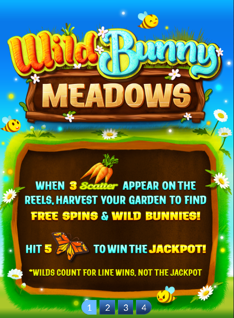 Wild Bunny Meadows - How to Play